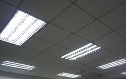 P1040513節能燈管